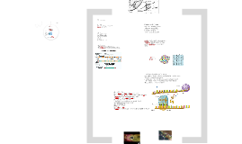 Copy of DNA, RNA, and Protein Synthesis