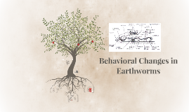 Behavioral Changes in Worms