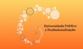 Universidade Pública e Profissionalização