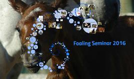 Foaling Seminar 2016