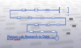 Matson Lab Research to Date