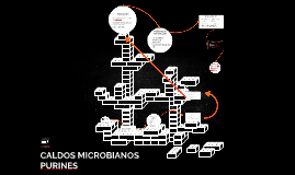 CALDOS MICROBIANOS PURINES