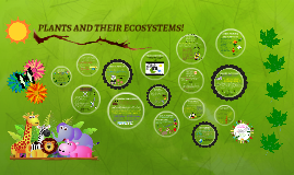 LEARN ABOUT PLANTS!
