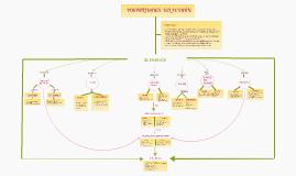 Copy of Mapa conceptual: perdón y reconciliación