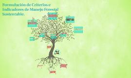 Formulación de Criterios e