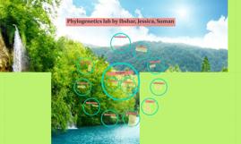 Phylogenetics lab by Ibshar, Jessica, Suman