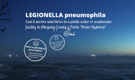 Copy of Legionella Pneumophila and its Relationship to Public Water and Wastewater Facilities