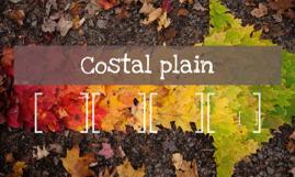 Costal plain
