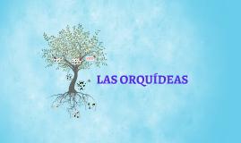 las orquides