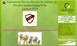 Asesoría Escuela Amelia Godoy Peña de Lautaro