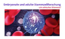 embryonale und adulte Stammzellforschung