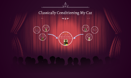 Classically Conditioning My Cat