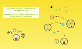 Copy of IDENTIFICACIÓN DEL CERTIFICADO DE PROFESIONALIDADDenominac
