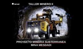 TALLER MINERO II