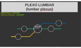 PLEXO LUMBAR