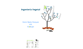 Ingeniería Vegetal