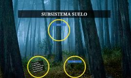 SUBSISTEMA SUELO