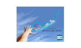 Copy of Copy of Sentido del tacto