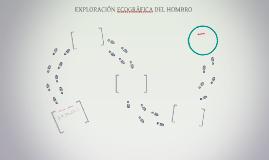 EXPLORACIÓN ECOGRÁFICA DEL HOMBRO