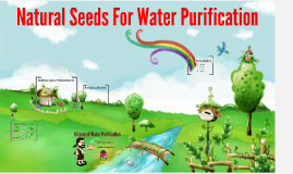 History of Water Purification