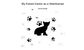 My Future Career as a Veterinarian
