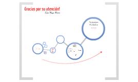 Presentación Participación Ciudadana
