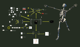 BTEC Structure and Function of the Skeletal System (Barry Comp)