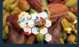 Copy of Factores que afectan la demanda de cacao en Estados Unidos y las exportaciones de cacao en grano de Ecuador
