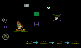 TEP 536: Life Science- Life Cycle of a Butterfly