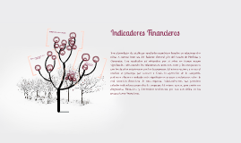 Copy of Indicadores financieros