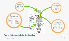 Care of Patients with Endocrine Disorders