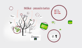 Copy of Miškai - žaliasis šalies rūbas