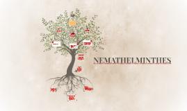 NEMATHELMINTHES