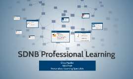 SDNB Professional Learning
