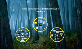 """Gaia, Biomimicry and Interior Design's Conscience"""