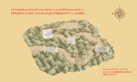 DETERMINACIÓN DE LOS IMPACTOS GENERADOS POR LA DEFORESTACIÓN