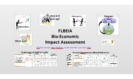 DEEPF: FLBEIA: A bioeconomic toolbox