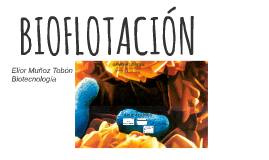 Copy of BIOFLOTACIÓN