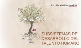 SUBSISTEMAS DE DESARROLLO DEL TALENTO HUMANO