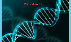 Tetra Amelia