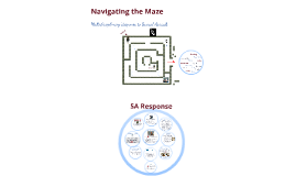 Navigating the Maze: Multidisciplinary Response to Sexual Assault (DCCV)