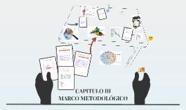 Copy of Copy of Copy of CAPITULO III