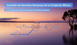 Elementos fundamentales de los DDHH