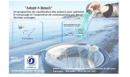 Adopt-A-Beach - 2RNCDS