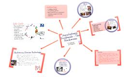 Copy of Parasitology - Ancylostoma