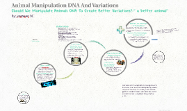 Animal Manipulation DNA And Variations