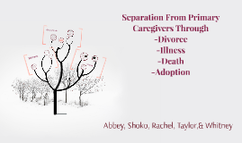 Separation From Primary Care Givers
