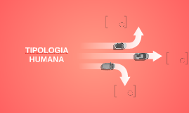TIPOLOGIA HUMANA