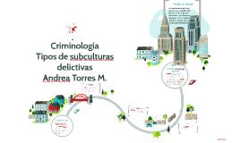 Copy of Criminología Tipos de subculturas delictiva