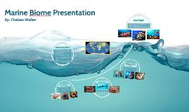 Marine Biome Presentation